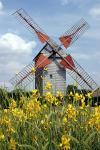 Agrandir l'image Moulin à vent Pelard