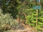 Agrandir l'image Le Jardin de Chantal et Alain