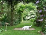 Le Jardin de Chantal et Alain