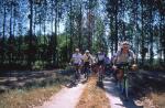 Agrandir l'image Circuits VTT balisés en forêt