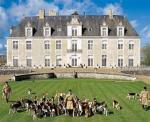 Agrandir l'image Château de Champchevrier