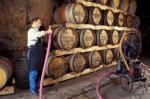 Agrandir l'image Domaine viticole Couly-Dutheil