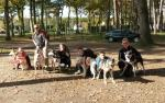 Agrandir l'image cani-randonnée